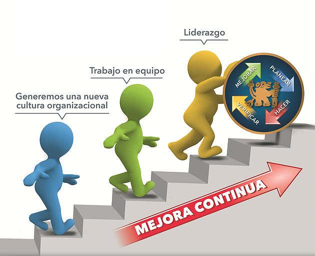 CONSULTORIA en Gestión, Operaciones, Mejora Contínua y de Costos.